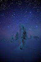 RIISITUNTURI NATIONAL PARK; FINLAND 2009; EUROPE; LANDSCAPE PHOTOGRAPHY; WINTER SCENERY; COLD; FEBRUARY; AURORA BOREALIS; NORTHERN LIGHTS; NIGHT PHOTOGRAPHY