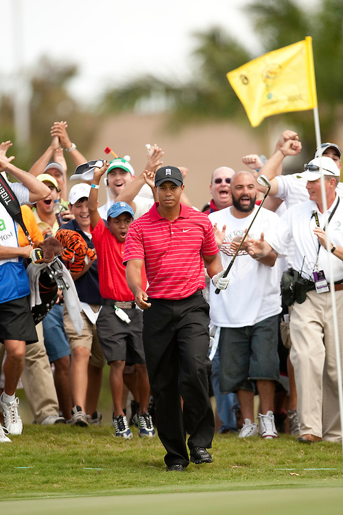 DORAL, FL - MARCH 15:  Tiger Woods walks to the green after he he hits his chip shot to the sixth green while the gallery reacts behind him during the fourth round of the 2009 WGC-CA Championship at Doral Golf Resort and Spa in Doral, Florida on Sunday, March 15, 2009. (Photograph by Darren Carroll) *** Local Caption *** Tiger Woods
