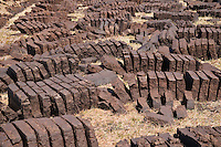 Rows of peat cuttings drying in the sun, Scotland.  Peat is a traditional fuel reasource in the Scottish highlands