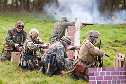 Pickering Showground Day 2..14 October 2012.Image © Paul David Drabble
