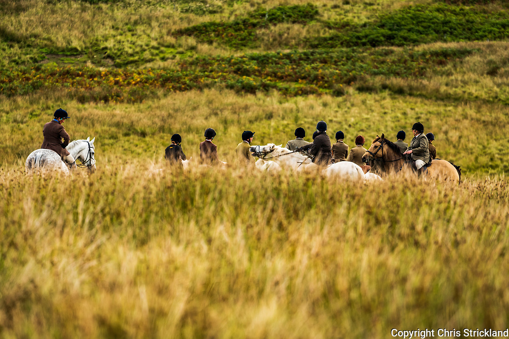 Roberton, Hawick, Scottish Borders, UK. 8th September 2018. The Duke of Buccleuch foxhounds and followers flushing foxes to guns during autumn hunting in the Hawick hills in Scotland.