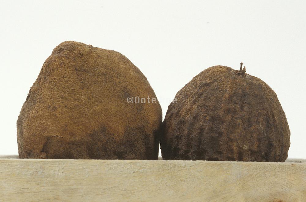 Still life of walnut husk with rock