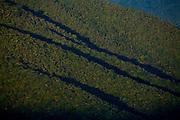 Pocos de Caldas_MG, Brasil...Reserva Particular do Patrimonio Natural (RPPN) em Pocos de Caldas...Private Natural Heritage Reserve (RPPN) in Pocos de Caldas...Foto: JOAO MARCOS ROSA / NITRO ..