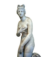 2nd century AD Roman marble sculpture of Aphrodite (Venus), 'Dresden Capitoline Type, copied from a Hellanistic Greek original,  inv 6238, Museum of Archaeology, Italy, white background ..<br /> <br /> If you prefer to buy from our ALAMY STOCK LIBRARY page at https://www.alamy.com/portfolio/paul-williams-funkystock/greco-roman-sculptures.html . Type -    Naples    - into LOWER SEARCH WITHIN GALLERY box - Refine search by adding a subject, place, background colour, etc.<br /> <br /> Visit our ROMAN WORLD PHOTO COLLECTIONS for more photos to download or buy as wall art prints https://funkystock.photoshelter.com/gallery-collection/The-Romans-Art-Artefacts-Antiquities-Historic-Sites-Pictures-Images/C0000r2uLJJo9_s0