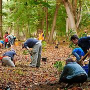 20211016 Houston Tree Planting