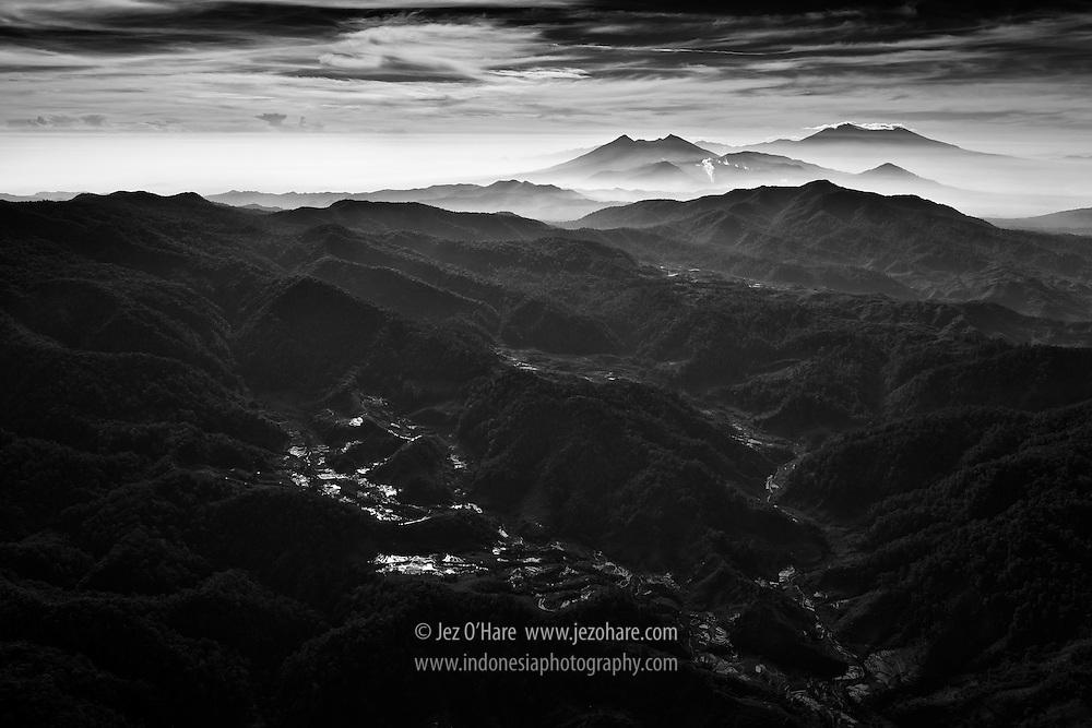 Mount Halimun-Salak National Park, Kabupaten Lebak & Sukabumi, Banten & West Java provinces, Indonesia.