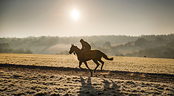 © Licensed to London News Pictures. 12/12/2017. Epsom, UK. A race horse is exercised on the gallops on Epsom Downs after a night of freezing sub zero temperatures. Photo credit: Peter Macdiarmid/LNP