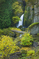 Wachlella Falls, Columbia River Gorge National Scenic Area Oregon