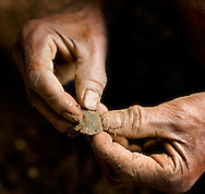 Small tool fragment recovered by a local Manggaria worker at Liang Bua cave, discovery site of the Flores hobbit, Homo floresiensis
