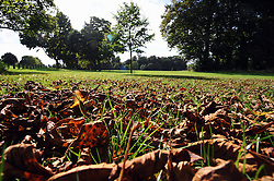 © Licensed to London News Pictures. 26/09/2013<br /> Autumn  Weather in Kent today (26.09.2013)<br />  The sunny autumn weather with autumnal leaves on the ground at Footscray Meadows,Sidcup,Kent.<br /> Photo credit :Grant Falvey/LNP