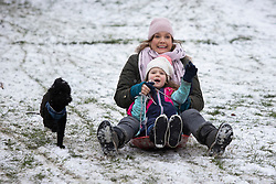 © Licensed to London News Pictures. 24/01/2021. London, UK. A dog runs next to sledders in a snowy Greenwich park in South East London. Snow is expected for large parts of the UK and a yellow weather warning is in place in parts of England. Photo credit: George Cracknell Wright/LNP