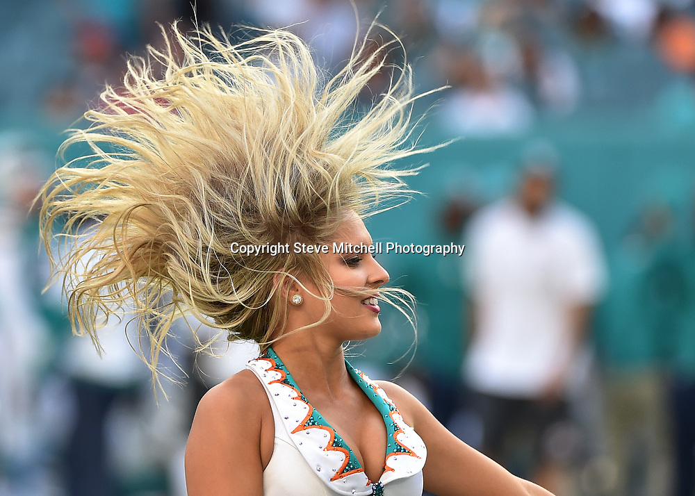 Nov 27, 2016; Miami Gardens, FL, USA; Miami Dolphins cheerleader performs during the second half against San Francisco 49ers at Hard Rock Stadium. The Dolphins won 31-24. Mandatory Credit: Steve Mitchell-USA TODAY Sports