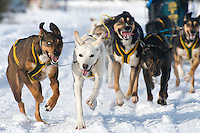 """Sled dogs tug their musher at the beginning of the Alpine leg of the International Pedigree Stage Stop Sled Dog Race. Blayne """"Buddy"""" Streeper won the event with an overall time of 19:52:42"""