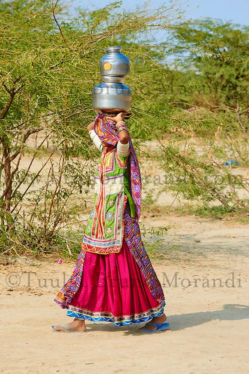Inde, Gujarat, Kutch, village de Hodka, population d'ethnie Harijan, femmes venuent chercher de l'eau au puits // India, Gujarat, Kutch, Hodka village, Harijan ethnic group, women at water well