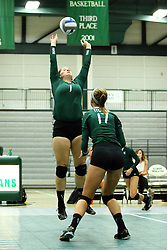 22 September 2015:  Heidi Dague(17) observes Leah Seielstad(1) set the ball to a player behind her during an NCAA womens division 3 Volleyball match between the Augustana Vikings and the Illinois Wesleyan Titans in Shirk Center, Bloomington IL