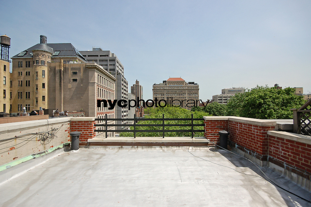 Roof Deck at 224 East 17th Street