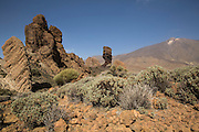 National park Las Canadas del Teide with mount Teide on the background.