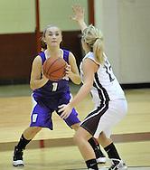 Vermilion at Wellington girls varsity basketball on December 6, 2010 at Midview High School.