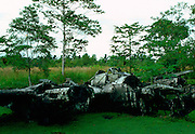 A wrecked World War II airplane abandoned in the Solomon Islands