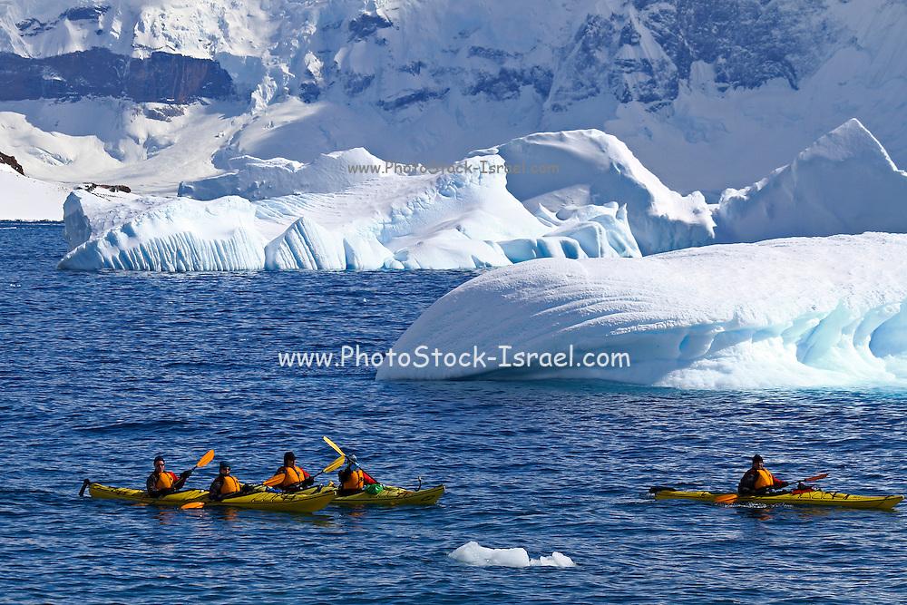 Kayaks in the sea around icebergs off Cuverville Island, Antarctica