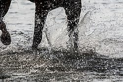 La Baule plage  <br /> Furusiyya FEI Nations Cup presented by Longines <br /> La Baule 2016<br /> © Hippo Foto - Dirk Caremans<br /> 14/05/16