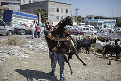 September 1, 2017 - Istanbul, Turkey - A man carries a sheep during the Eid al-Adha celebrations in Istanbul. Muslims across the world are preparing to celebrate the annual holiday of Eid al-Adha, or the Festival of Sacrifice, by visiting the tombs of their loved ones and slaughtering sheep, goats, cows and camels, marking the end of the Hajj pilgrimage to Mecca and in commemoration of Prophet Abraham's readiness to sacrifice his son, Ismail, on God's command. (Credit Image: © Can Erok/Depo Photos via ZUMA Wire)