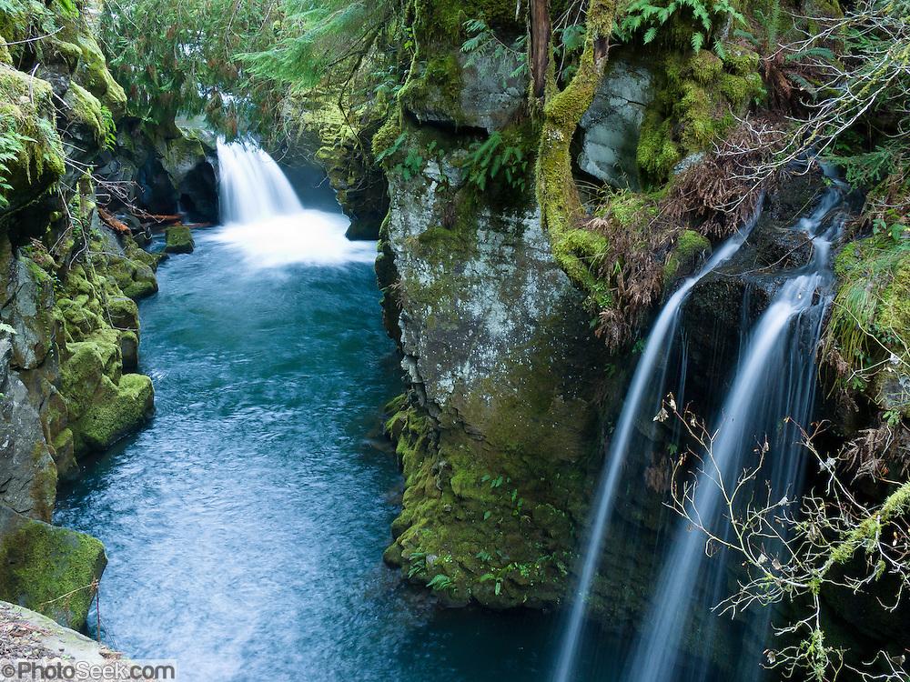 Two pretty waterfalls along the North Umpqua River, on the half-mile trail to Toketee Falls, Oregon, USA.