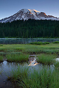 Mount Rainier is partially reflected in a tarn in a meadow along Reflection Lake in Mount Rainier National Park, Washington. Mount Rainier, with an elevation of 14,411 feet (4,392 meters), is the tallest mountain in Washington and the highest mountain in the Cascade Range.