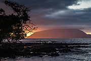Volcan Ecuador<br /> Ecuador Volcano. Isabela Island<br /> GALAPAGOS ISLANDS<br /> ECUADOR.  South America