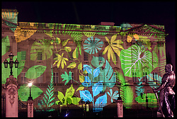 April 15, 2018 - London, London, United Kingdom - Queen's Commonwealth Canopy project. A Rainforest design is projected on to Buckingham Palace in London as part of the Queen's Commonwealth Canopy project (QCC), a global conservation initiative in the Queen's name which seeks to preserve precious areas of forest for future generations. (Credit Image: © i-Images via ZUMA Press)