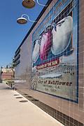 Touched by the Sun Tile Wall Mural in Bellflower California