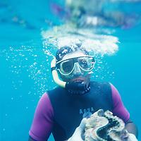 Fiji Islands, Nukubati Island Resort, resort staf diver with giant clam, Tridacna