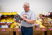 "08 JULY 2020 - JEWELL, IOWA: A worker in the Jewell Market reloads a price gun in the produce section of the Jewell Market. The only grocery store in Jewell, a small community in central Iowa, closed in 2019. It served four communities within a 20 mile radius of Jewell. Some of the town's residents created a cooperative to reopen the store. They sold shares to the co-op and  held fundraisers through the spring. Organizers raised about $225,000 and bought the store, which reopened July 8. Before the reopening, Jewell had been a ""food desert"" for seven months. The USDA defines rural food deserts as having at least 500 people in a census tract living 10 miles from a large grocery store or supermarket. There is a convenience store in Jewell, but it sells mostly heavily processed, unhealthy snack foods that are high in fat, sugar, and salt.         PHOTO BY JACK KURTZ"