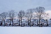 London homes and bare 100 year-old mature ash trees in Ruskin Park, Lambeth, snow during the early 2010 snows that gripped the UK.
