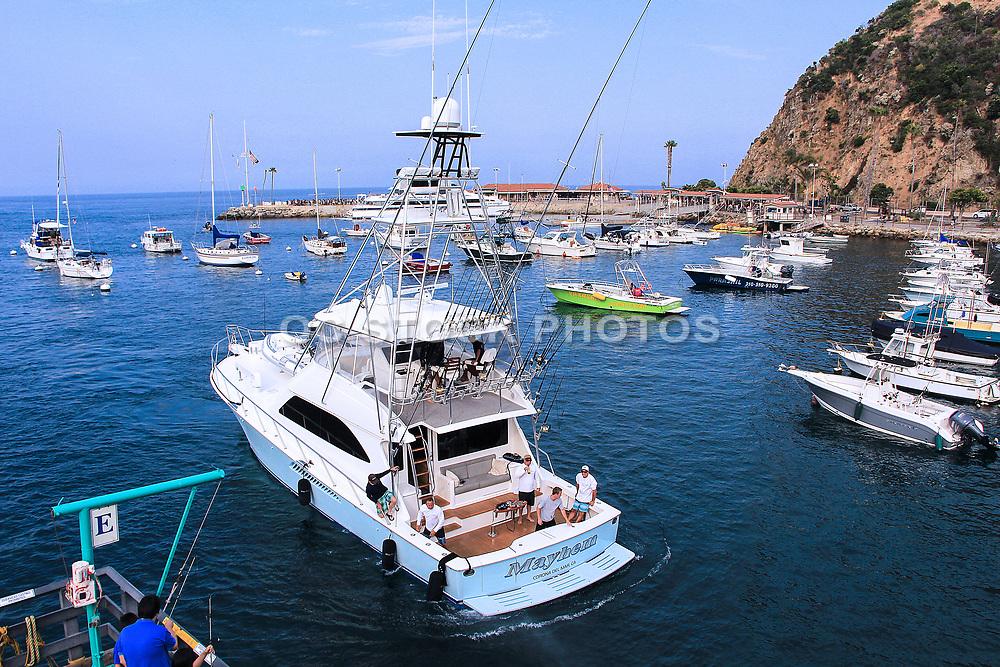 Boats Anchored Catalina Island