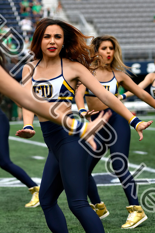 2018 November 24 - FIU Golden Dazzlers at the Riccardo Silva Stadium, Miami, Florida. (Photo by: Alex J. Hernandez / photobokeh.com) This image is copyright by PhotoBokeh.com and may not be reproduced or retransmitted without express written consent of PhotoBokeh.com. ©2018 PhotoBokeh.com - All Rights Reserved