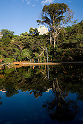 Goiania_GO, Brasil...Lagoa no Bosque dos Buritis na cidade de Goiania...A lake at the Bosque dos Buritis in Goiania city...Foto: BRUNO MAGALHAES / NITRO