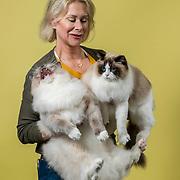 East of Eden Cat Fancier's 2020 for L.A. Times
