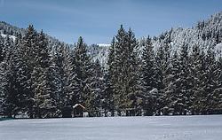 THEMENBILD - unberührte Schneefläche vor verschneiten Nadelbäumen und eine kleine Holzhütte. Das Naturdenkmal Wasenmoos lädt auch im Winter zu ausgedehnten Wanderungen in den Kitzbüheler Alpen ein, aufgenommen am 21. November 2020 in Mittersill, Oesterreich // untouched snow surface in front of snow-covered coniferous trees and a small wooden hut. The natural monument Wasenmoos invites you also in winter to extensive hikes in the Kitzbüheler Alps, in Mittersill, Austria on 2020/11/21. EXPA Pictures © 2020, PhotoCredit: EXPA/Stefanie Oberhauser