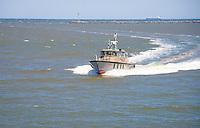 Pilot boat, in Lewes Delaware harbor.