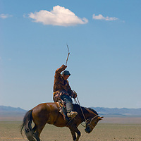 A nomadic Mongolian herder tries to 'saddle-break' a horse in the southern Gobi Desert.