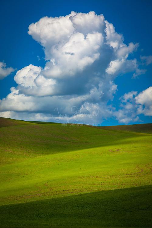 Clouds over Palouse farm field