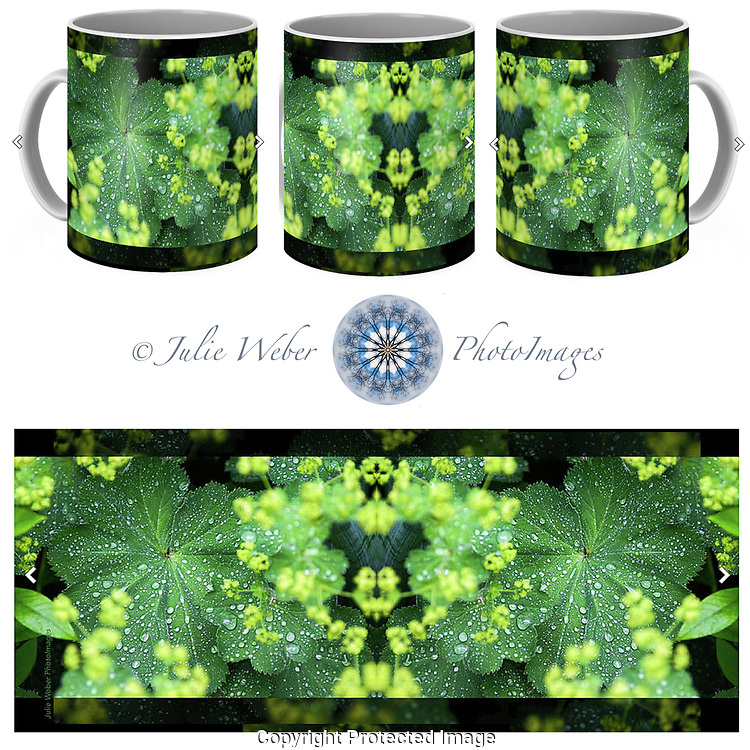 Coffee Mug Showcase 1 - Shop here:  https://2-julie-weber.pixels.com/products/flowering-ladys-mantle-julie-weber-coffee-mug.html