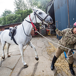 Band of the Household Cavalry at their stables, Tower Farm, Edinburgh
