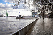 Cologne, Germany, February 4th. 2021, flood of the river Rhine, flooded promenade in the old part of the town, view to the Severins bridge and the Chocolate Museum.<br /> <br /> Koeln, Deutschland, 4. Februar 2021, Hochwasser des Rheins, uberflutete Promenade in der Altstadt, Blick zur Severinsbruecke und zum Schokoladenmuseum.