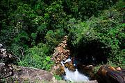 Ouro Preto_MG, Brasil..Parque Municipal das Andorinhas considerado uma das nascentes do Rio das Velhas em Ouro Preto, Minas Gerais...Andorinhas Municipal Park considered one of the headwaters of the Rio das Velhas in Ouro Preto, Minas Gerais..Foto: JOAO MARCOS ROSA / NITRO