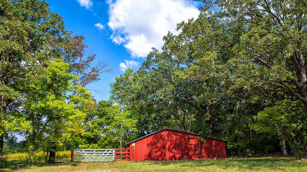With A New Coat Of Red Paint, This Old Barn Pops From The Green Foliage