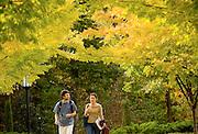 Students take a fall stroll.