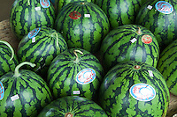 The Miura Peninsula, just south of Tokyo and Yokohama, is one of the most famous spots in Japan for growing bountiful and sweet watermelons.  In winter, the crop changes to daikon radishes, another product for which Miura is famous.