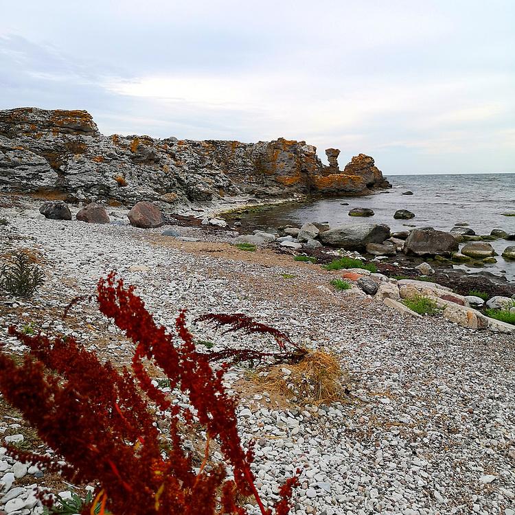 Holmhällars strand och raukområde.<br /> PHOTO © Bernt Lindgren